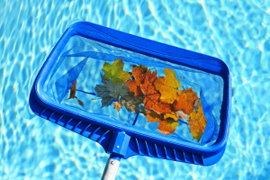 Top 10 Best Pool Skimmers Reviews for 2018