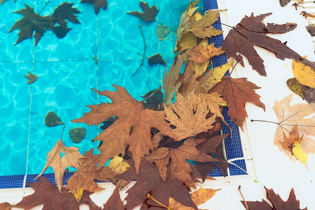 Pool Cleaner for Leaves